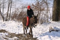 únor 2010, zimní procházka