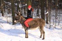 2/2010, zimní procházka Bětka na Oslince