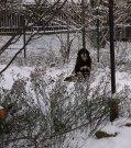 Vivinka 19/12/2009